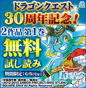 ドラゴンクエスト30周年記念