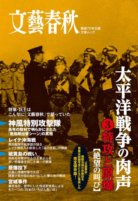 太平洋戦争の肉声(3)特攻と原爆拡大写真