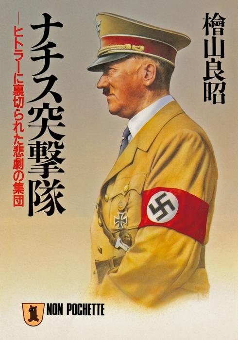 ナチス突撃隊拡大写真