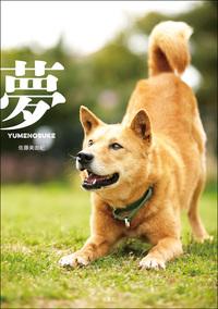 夢-YUMENOSUKE--電子書籍