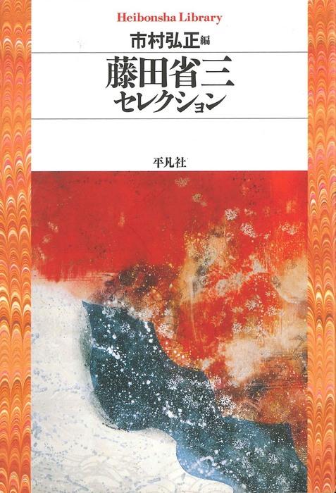 藤田省三セレクション拡大写真