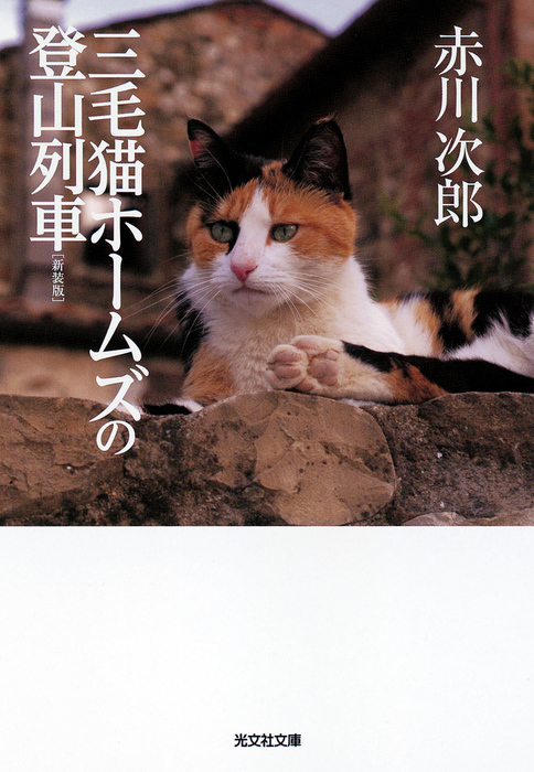 三毛猫ホームズの登山列車 新装版拡大写真