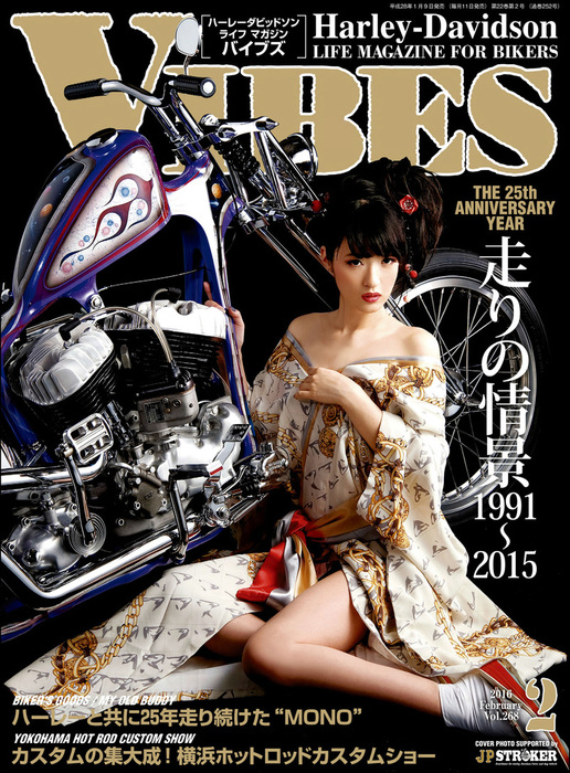 VIBES【バイブズ】2016年2月号拡大写真