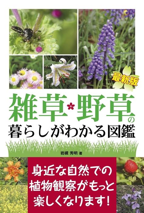 最新版 雑草・野草の暮らしがわかる図鑑拡大写真