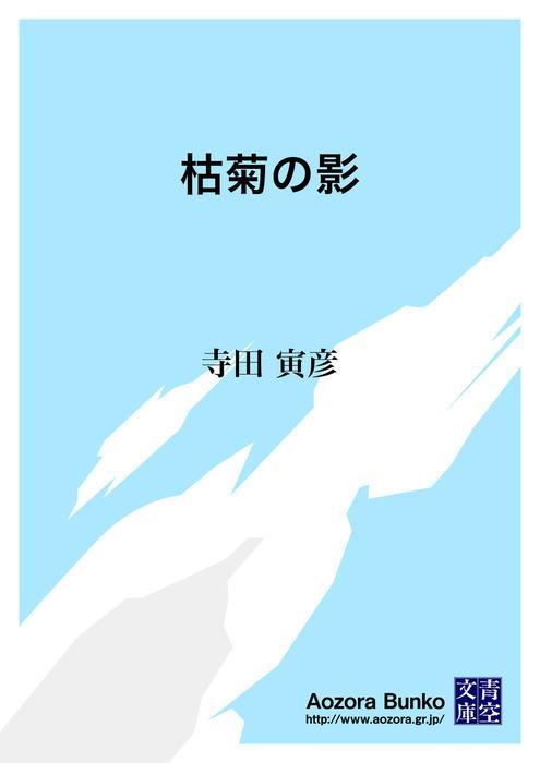 枯菊の影拡大写真