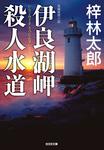 伊良湖(いらご)岬殺人水道-電子書籍