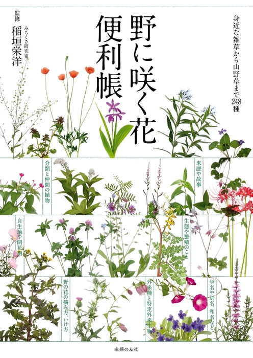 野に咲く花便利帳拡大写真