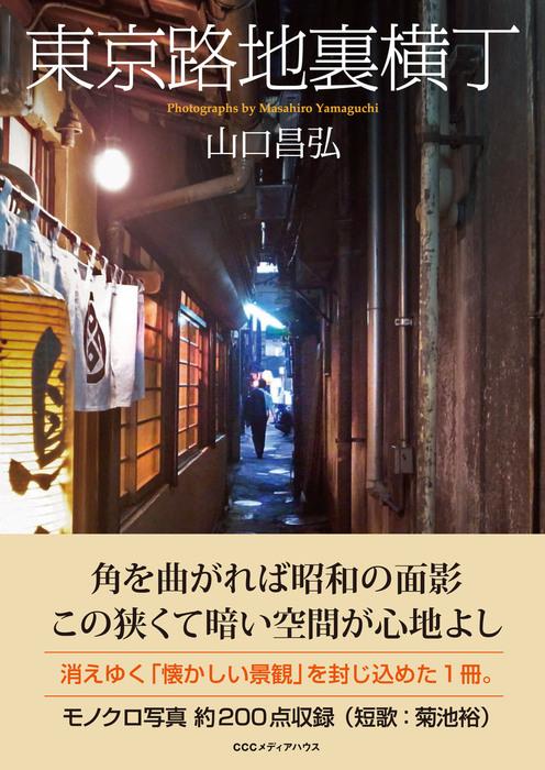 東京路地裏横丁拡大写真