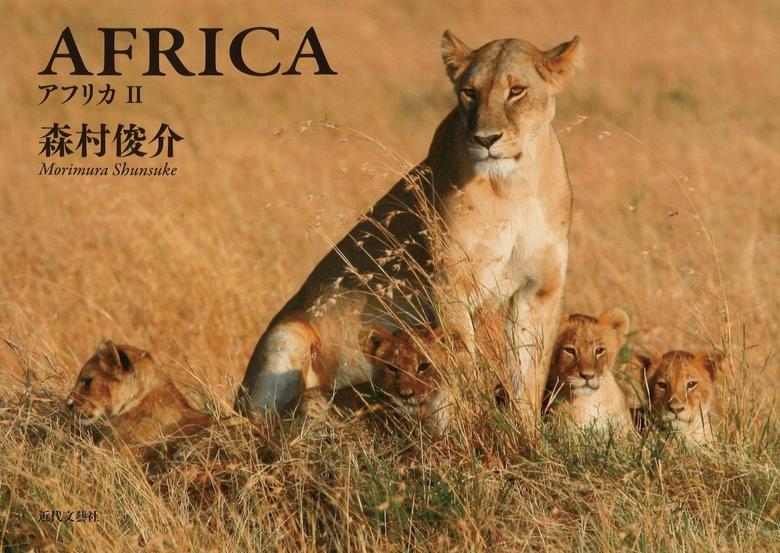 AFRICA拡大写真