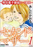 セカンド・マザー~特別養子縁組という選択~(ストーリーな女たち)