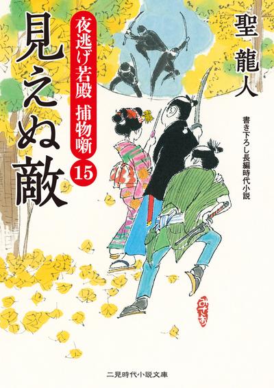 見えぬ敵 夜逃げ若殿 捕物噺15-電子書籍