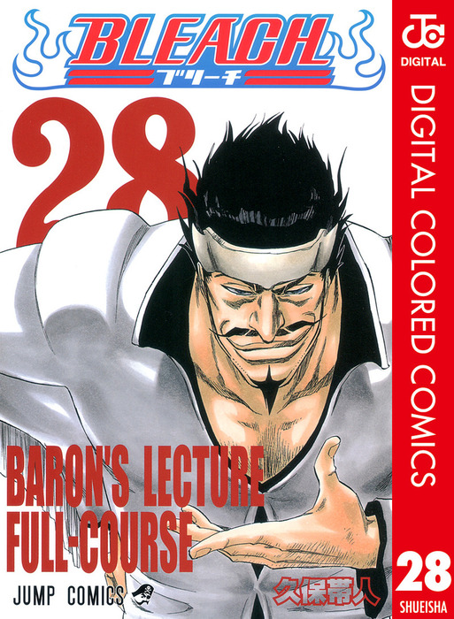 BLEACH カラー版 28-電子書籍-拡大画像