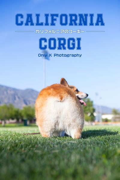 CALIFORNIA CORGI -カリフォルニアのコーギー--電子書籍
