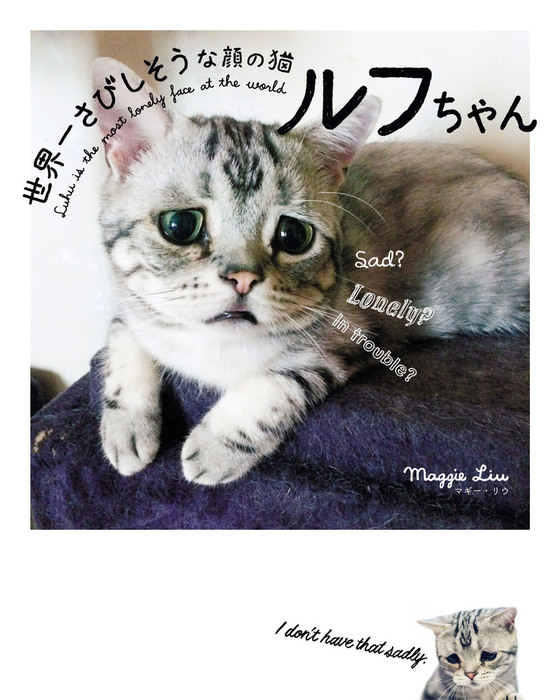 世界一さびしそうな顔の猫 ルフちゃん拡大写真