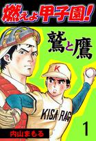 「燃えよ甲子園!鷲と鷹(グループ・ゼロ)」シリーズ