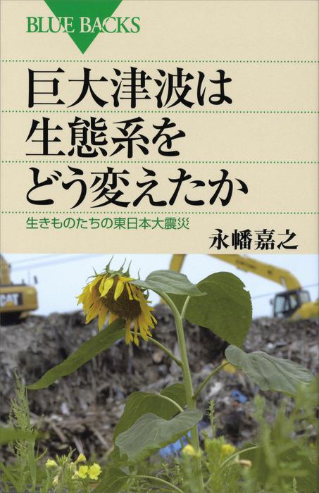 巨大津波は生態系をどう変えたか 生きものたちの東日本大震災拡大写真