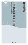 中国人の病み 日本人の闇-電子書籍