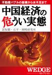 中国経済の危うい実態(WEDGEセレクション No.22)-電子書籍