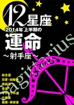 12星座2014年上半期の運命~射手座~-電子書籍