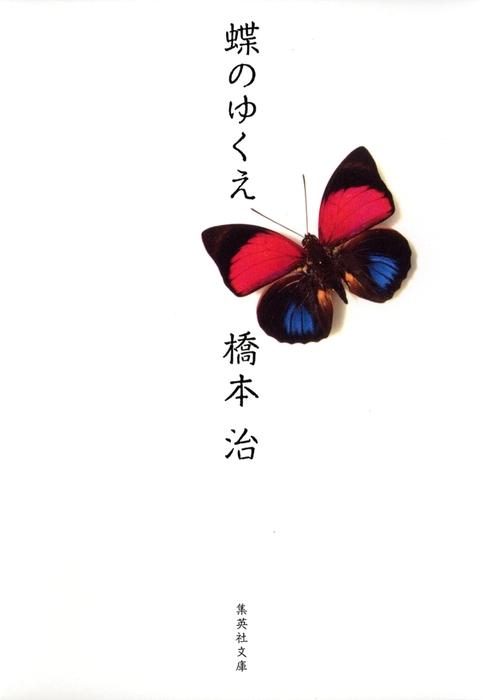 蝶のゆくえ拡大写真