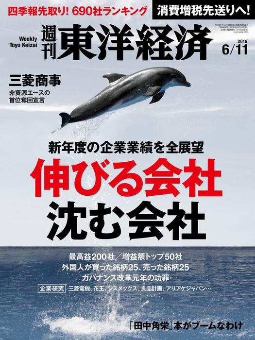週刊東洋経済 2016年6月11日号-電子書籍-拡大画像