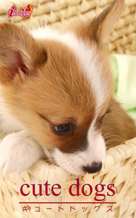 cute dogs33 ウェルシュ・コーギー-電子書籍-拡大画像