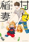 甘々と稲妻(3)-電子書籍