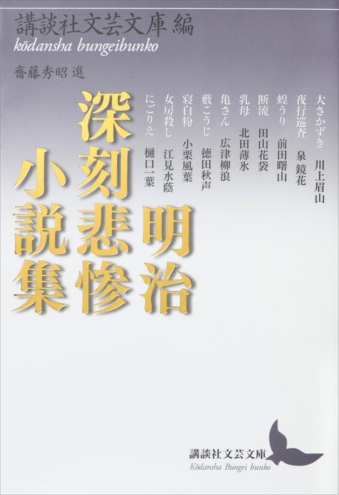 明治深刻悲惨小説集拡大写真