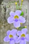 野川イサムのロケの合間に見た花 vol.01-電子書籍