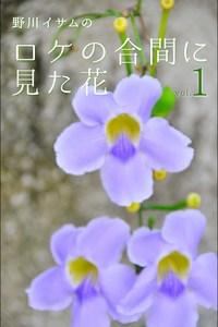 野川イサムのロケの合間に見た花 vol.01