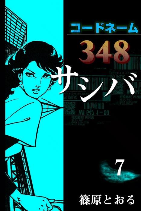 コードネーム348 サシバ (7)拡大写真