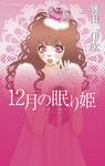12月の眠り姫-電子書籍