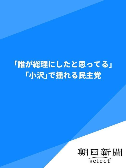 「誰が総理にしたと思ってる」 「小沢」で揺れる民主党-電子書籍-拡大画像