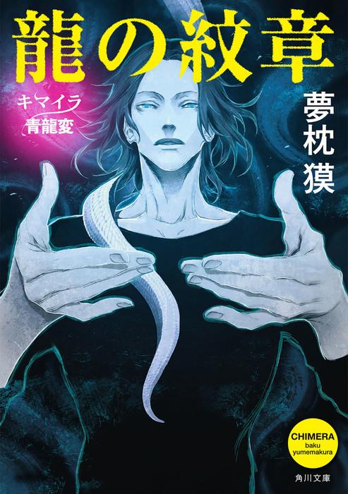 龍の紋章 キマイラ青龍変拡大写真