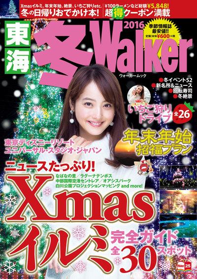 東海冬Walker2016-電子書籍