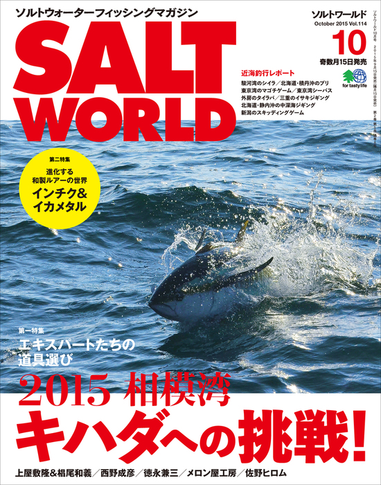 SALT WORLD 2015年10月号 Vol.114拡大写真