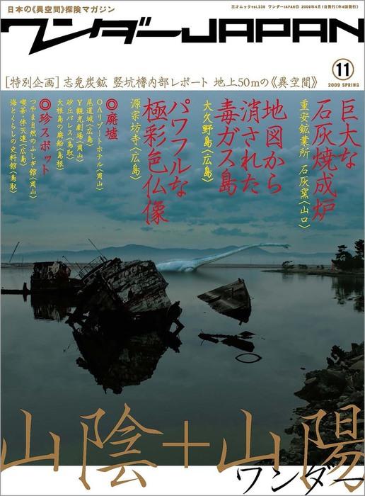 ワンダーJAPAN vol.11拡大写真