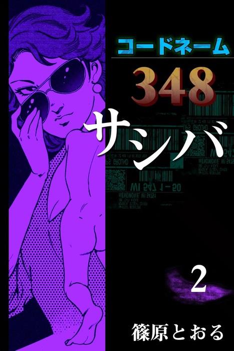 コードネーム348 サシバ (2)拡大写真