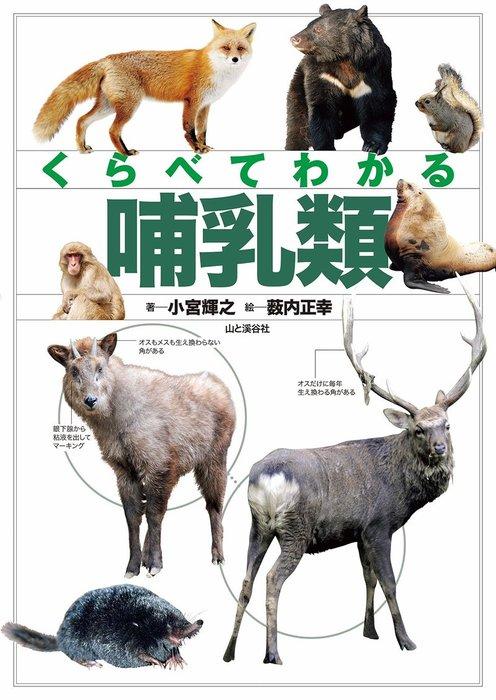 くらべてわかる 哺乳類拡大写真