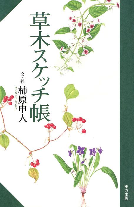 草木スケッチ帳拡大写真