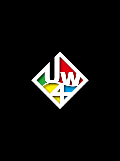 U_WAVE公式ツアーパンフレット U_WAVE TOUR 2013 フォースアタック-電子書籍