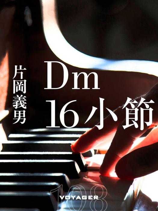 Dm16小節拡大写真