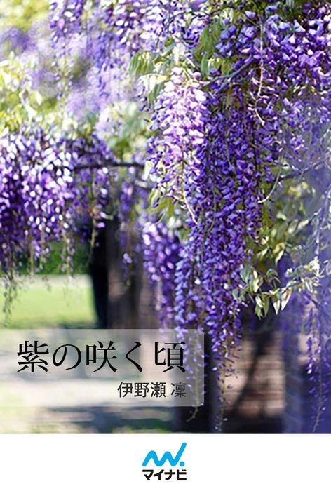 紫の咲く頃拡大写真
