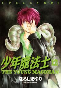少年魔法士(12)