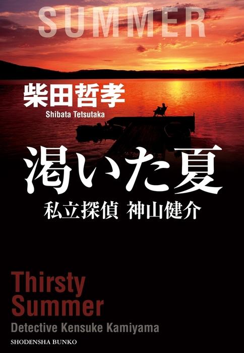 渇いた夏 私立探偵 神山健介拡大写真
