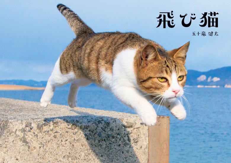 飛び猫-電子書籍-拡大画像
