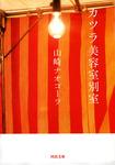 カツラ美容室別室-電子書籍