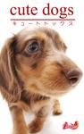 cute dogs28 ダックスフンド-電子書籍