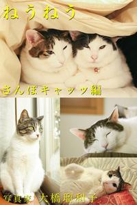 ねうねう さんぽキャッツ編