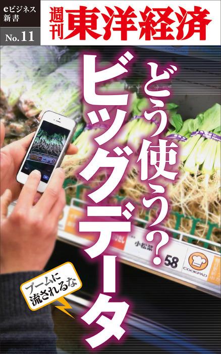 どう使う?ビッグデータ―週刊東洋経済eビジネス新書No.11-電子書籍-拡大画像